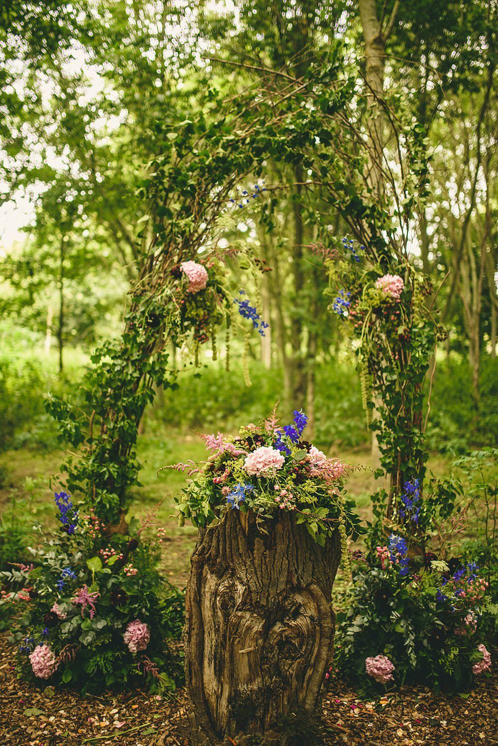 Stunning flowers in woodland setting.