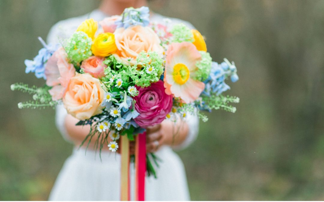 A Bright Burst of Spring Blooms for Woodland Shoot by Camilla J Hards